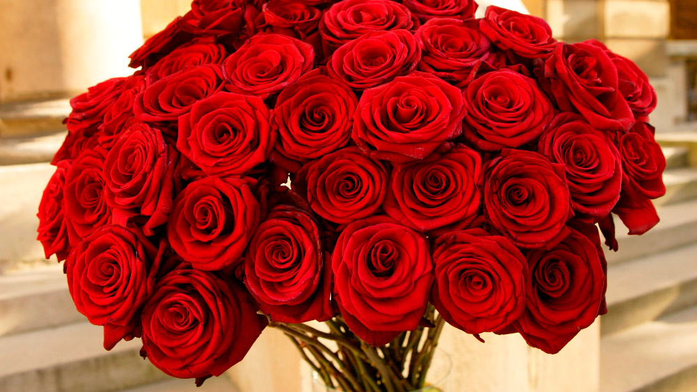 ramos de rosas 5 - Imagenes De Ramos De Rosas