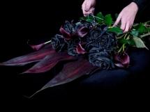 Rosas negras (3)